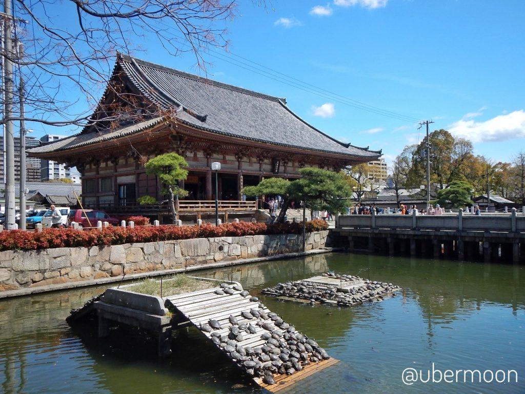 Kura-kura Shitennoji Temple