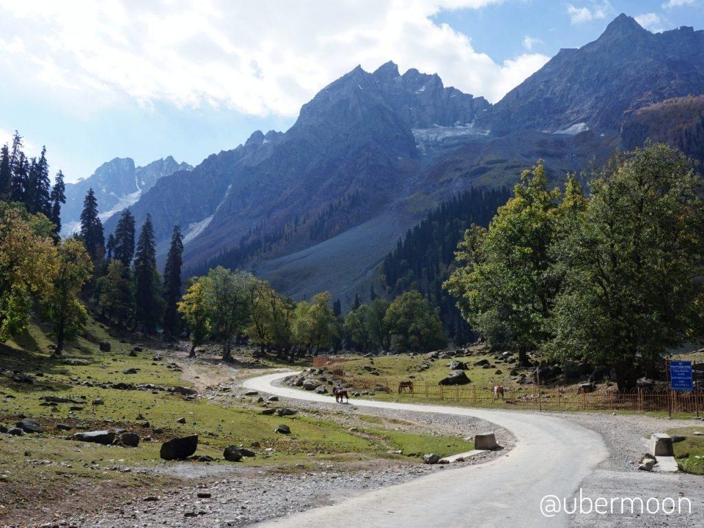 Trip ke Kashmir Pemandangan Sonamarg